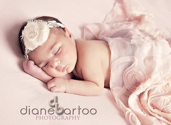 Beautiful newborn pictures riverside