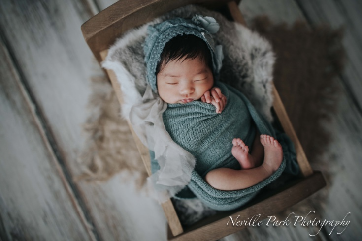 The mini newborn session neville park photography