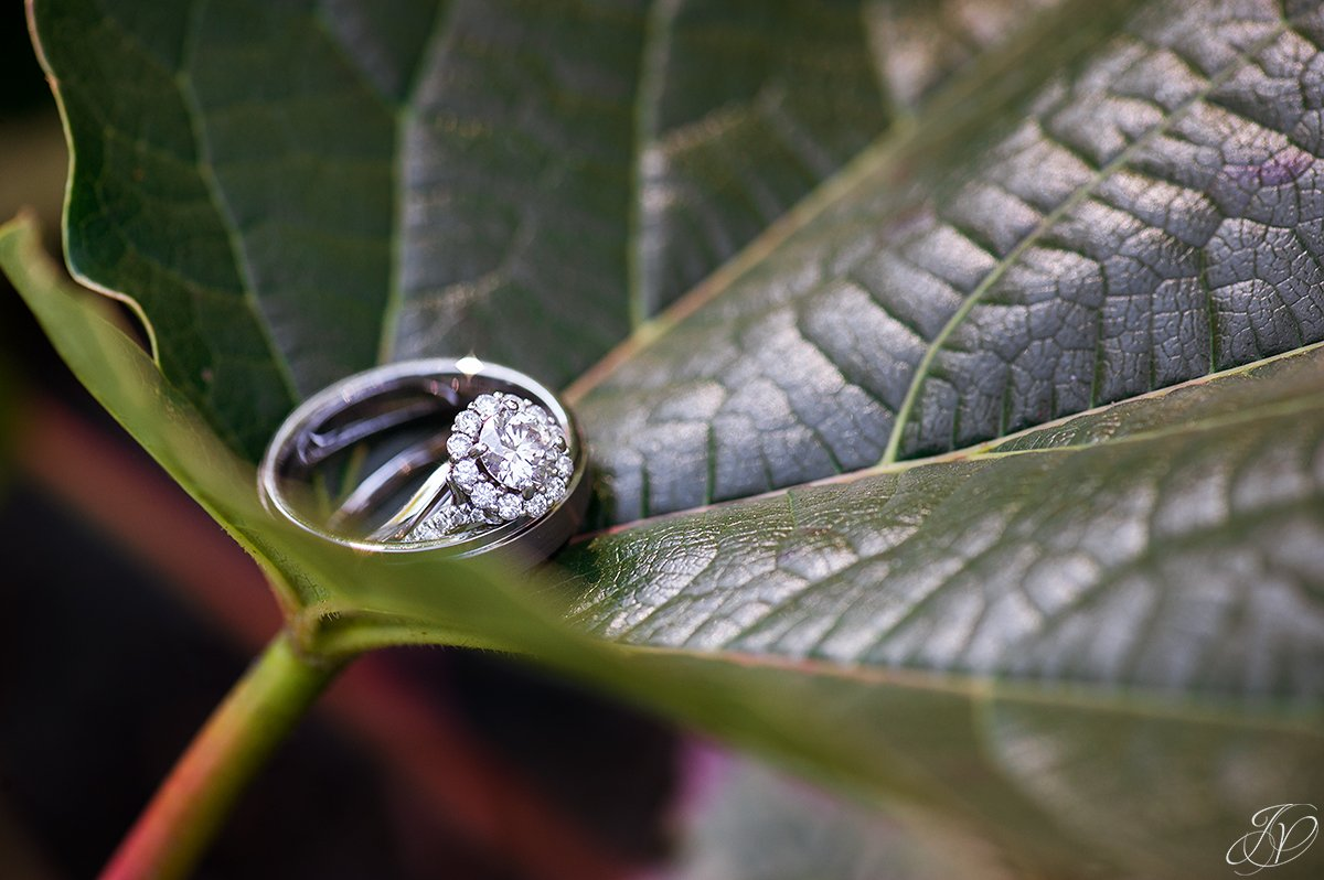 vintage wedding ring photo jessica painter photography