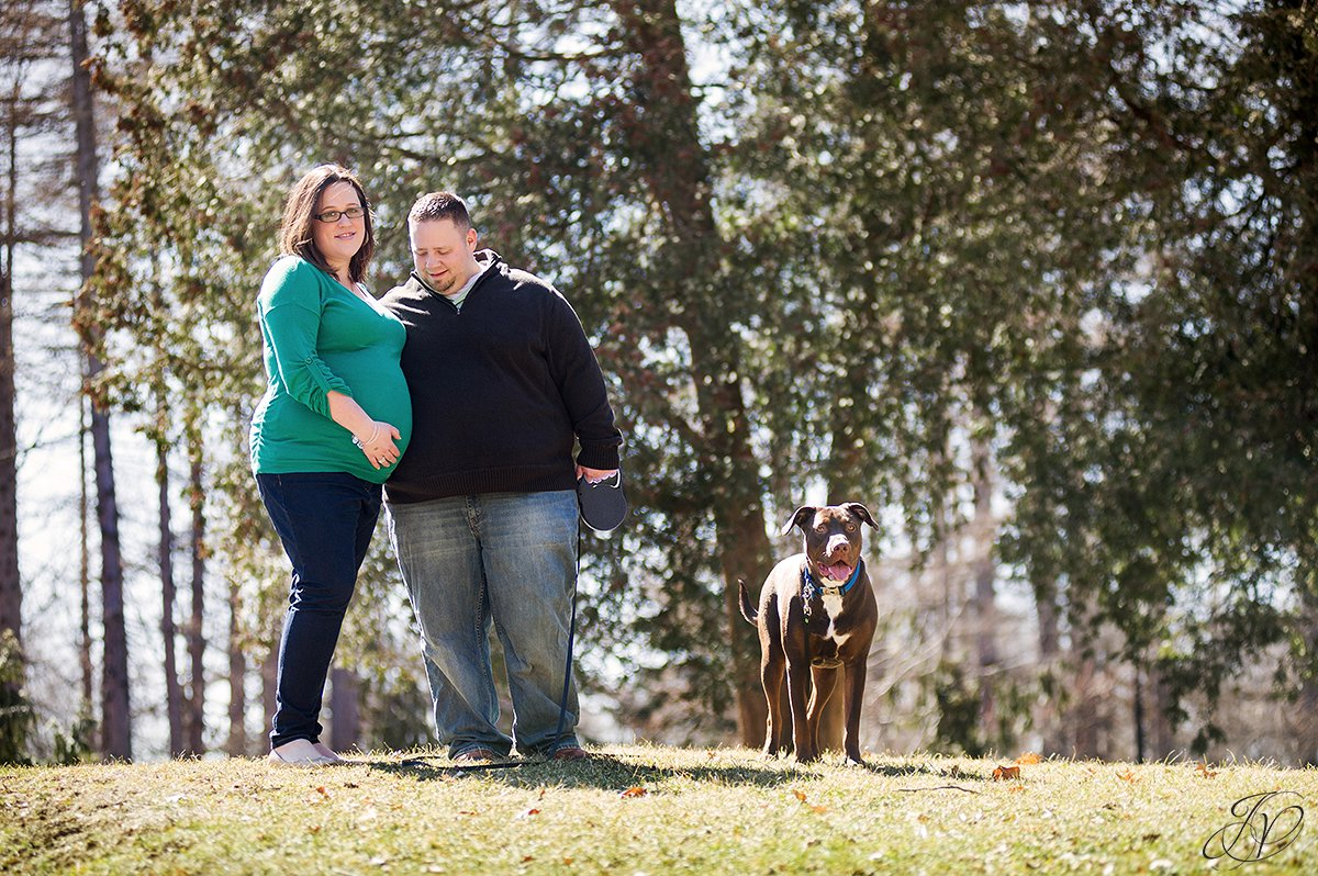 dog and couple in washington park, couple walking dog in washington park, expecting mother and chocolate lab, maternity session washington park, maternity and pet portraits in washington park albany, albany maternity photographer, albany maternity photos
