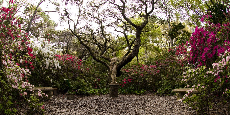 Manteo elizabethan gardens garden ftempo for Outer garden