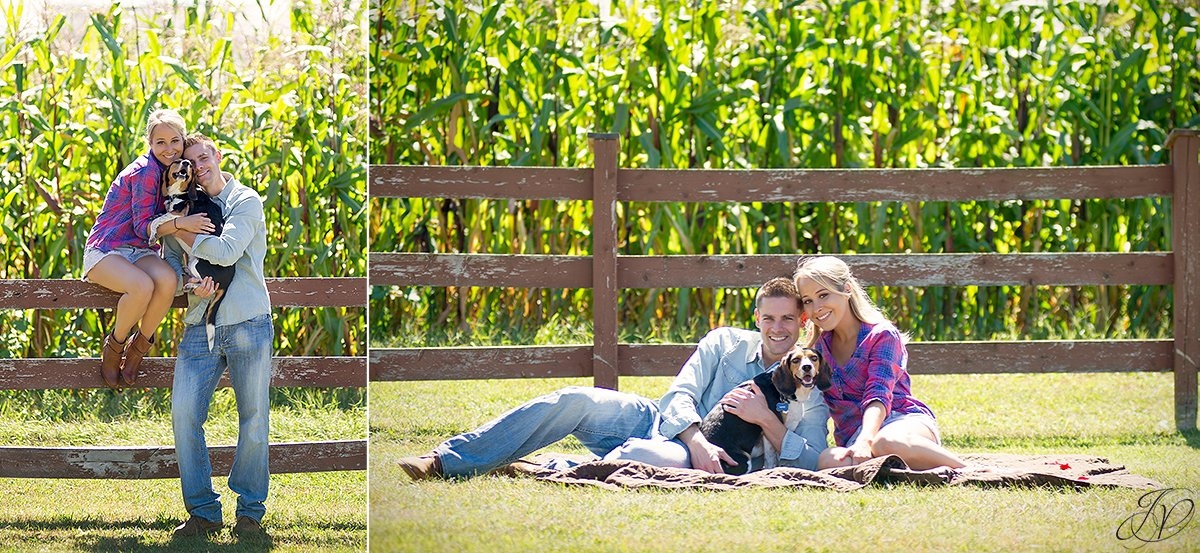 cute engagement photo with pet